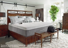 Thomasville® Saturn Bed