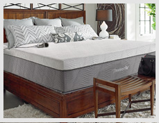 About Thomasville Adjustable Air Beds